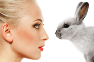 Vegan Beauty Products Bunny