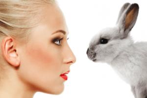 Vegan Beauty Products Bunny